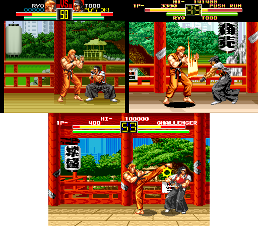 artoffighting_versiones